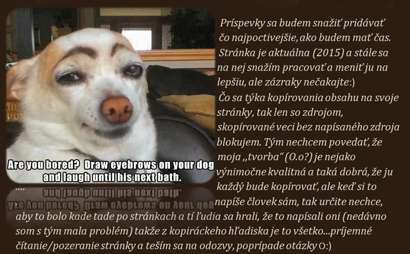 http://www.star-spevacky.estranky.sk/img/picture/169/02.jpg